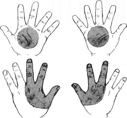 Gunshot Residue Retention The Hands