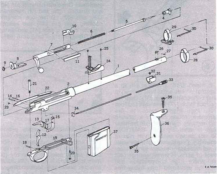 Exploded Views Firearms Assembly Bev Fitchett S Guns
