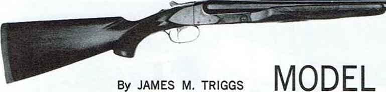 Winchester shotgun firearms assembly bev fitchetts guns magazine winchester shotgun fandeluxe Choice Image
