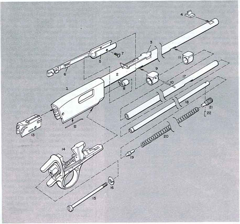 Winchester Model Rifle - Firearms Assembly