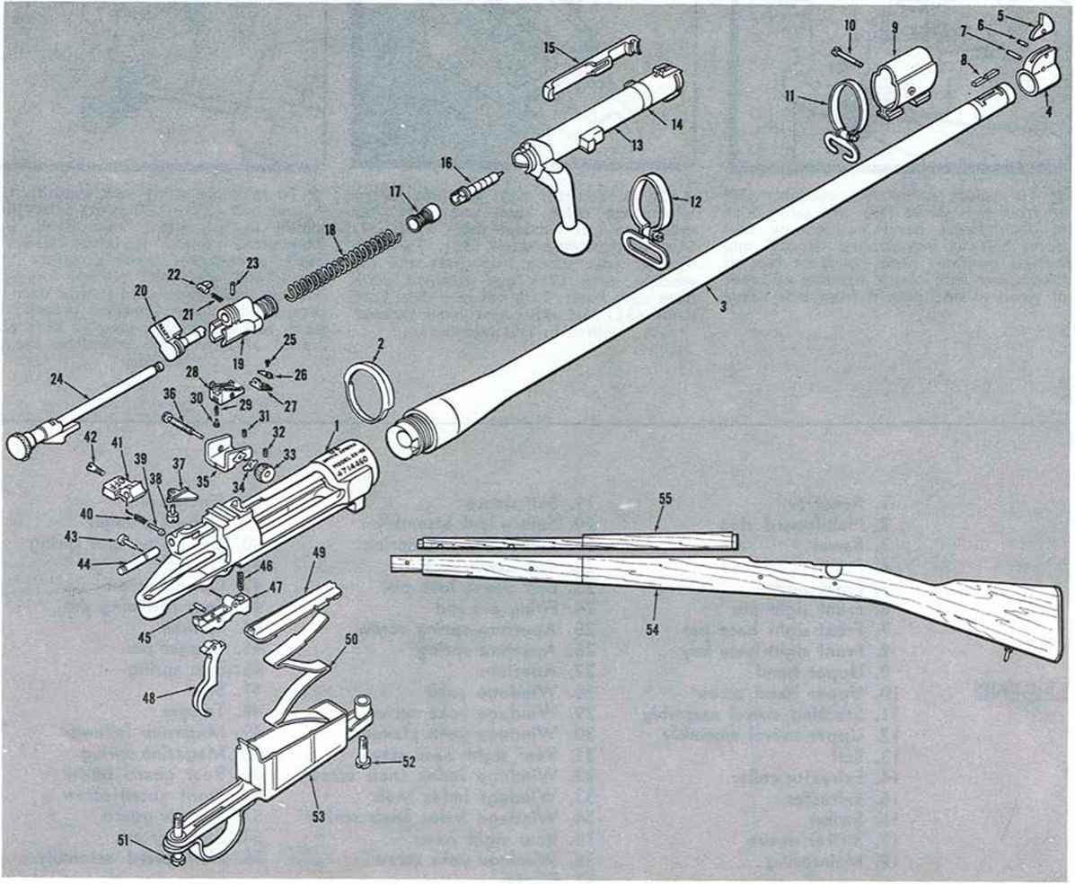 Firing Mechanisms For Guns : Springfield firearms assembly bev fitchett s guns magazine