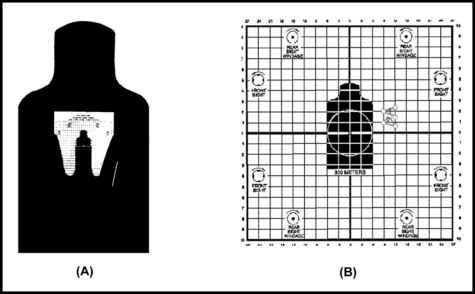 Proper Aiming Rifle Sights