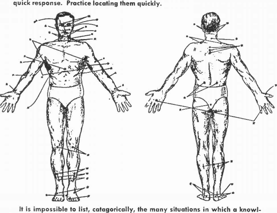 Nerve Centers And Pressure Points
