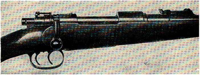Rifle Sectional View
