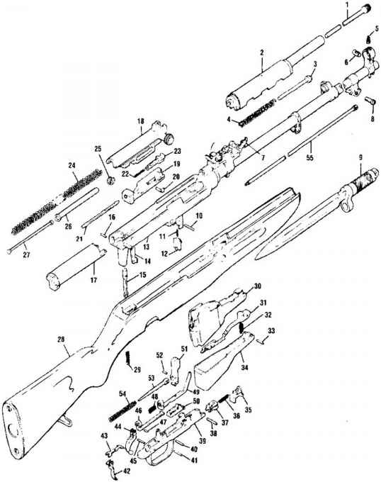 ar-15 diagrams blueprints related keywords